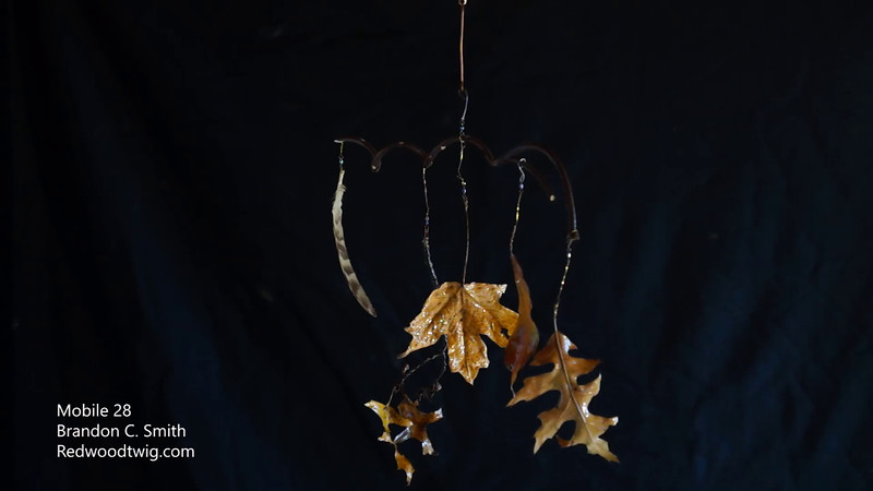 Mobile 28, leaves and feather