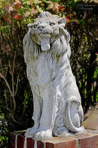 Statue of Lion at St. James Episcopal Church in Long Beach,NY.