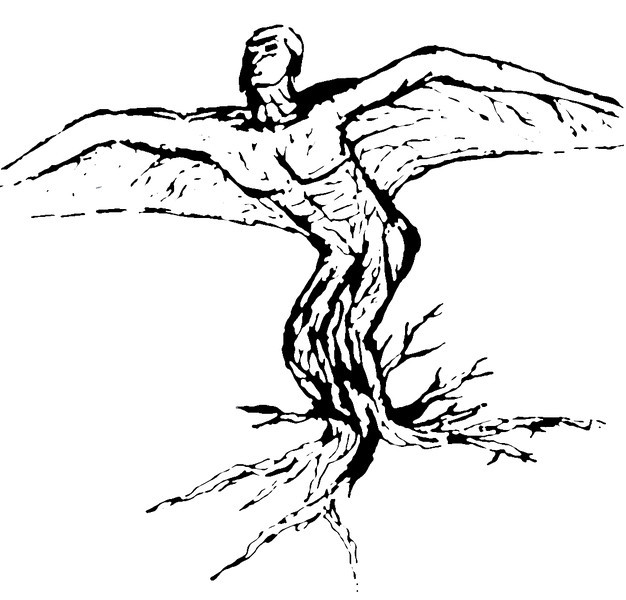Polarity - Sketch