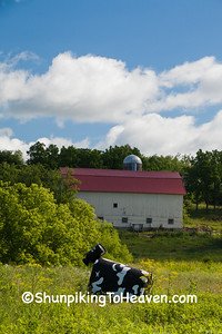 Whimsical Cow Sculpture, Lafayette County, Wisconsin