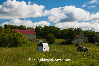 Whimsical Cow Sculptures, Lafayette County, Wisconsin