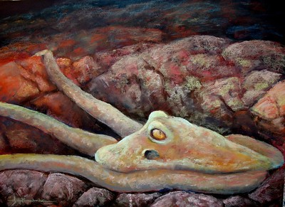 "Galapagos Octopus 22""x30"" Soft Pastel on Touch Sanded Ppaer"