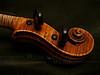 Violin Scroll on Dark Green Velvet   [darker version of a previous photo]