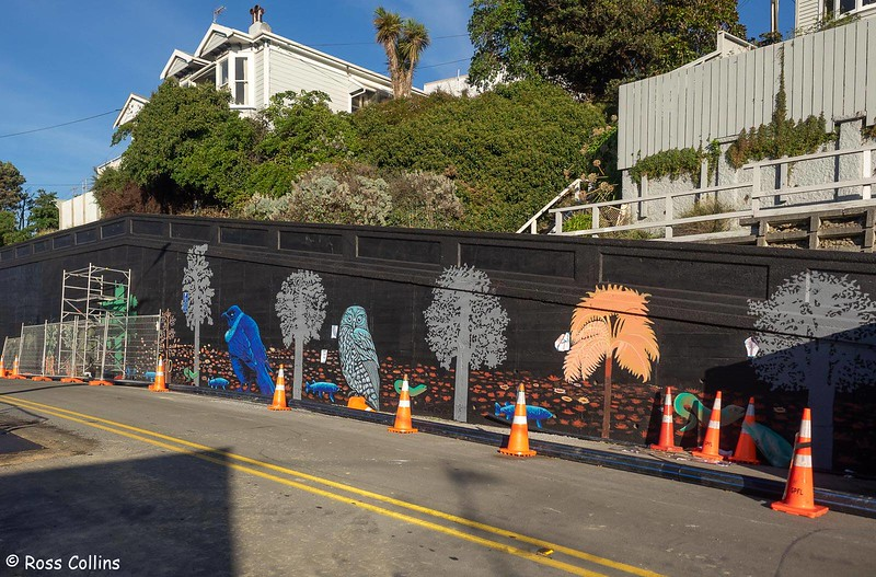 Sheyne Tuffery mural, Wellington, 23 May 2020