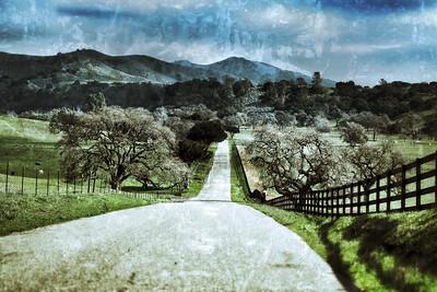 Santa Ynez, California, January 2013