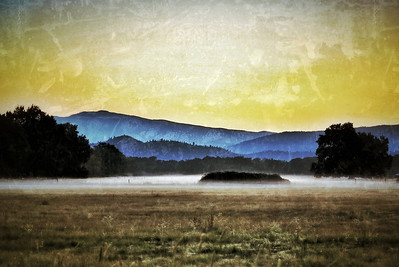 Covelo Valley, California, November 2012