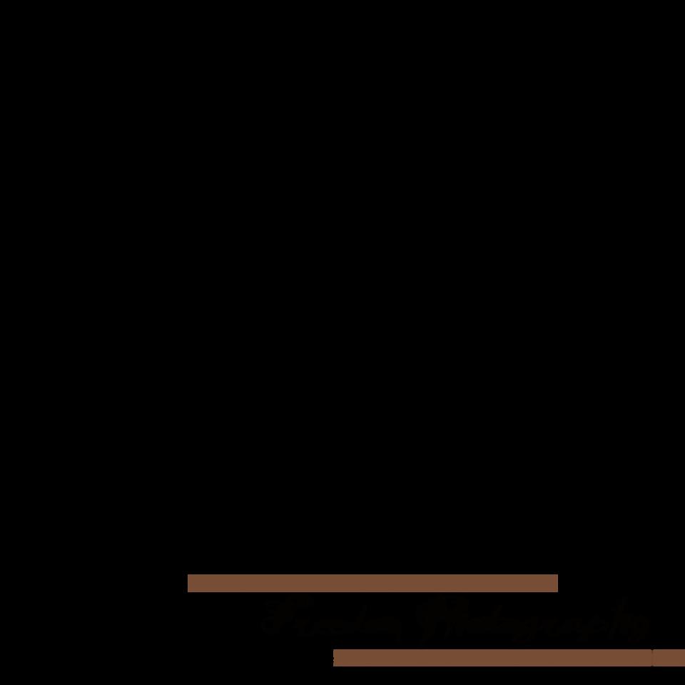 Transparent logo 2 copy