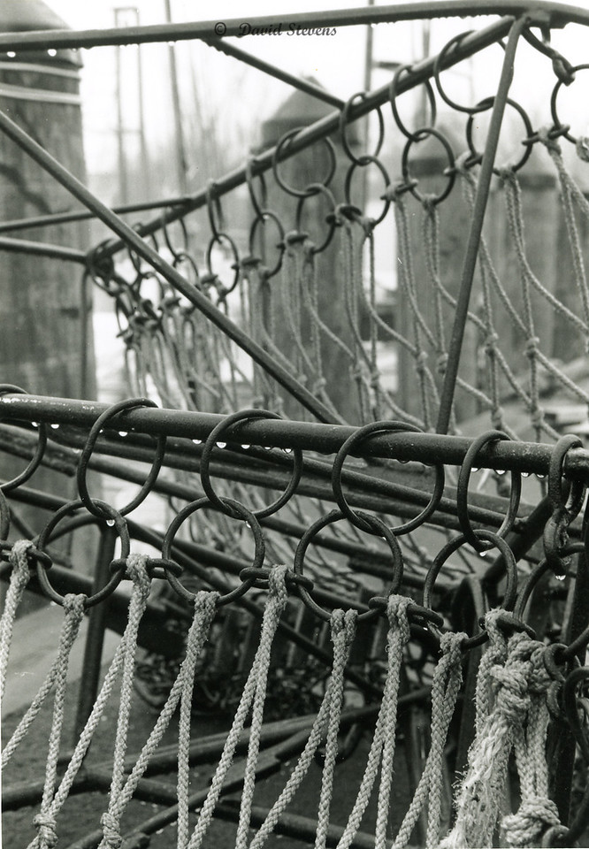 Hoops of Oyster Dredge