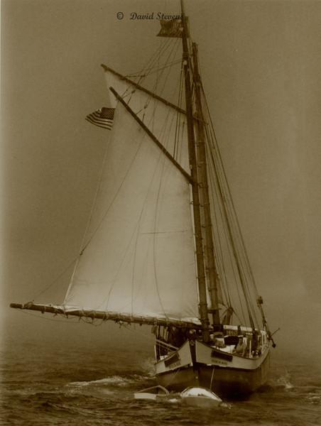 Maine Schooner
