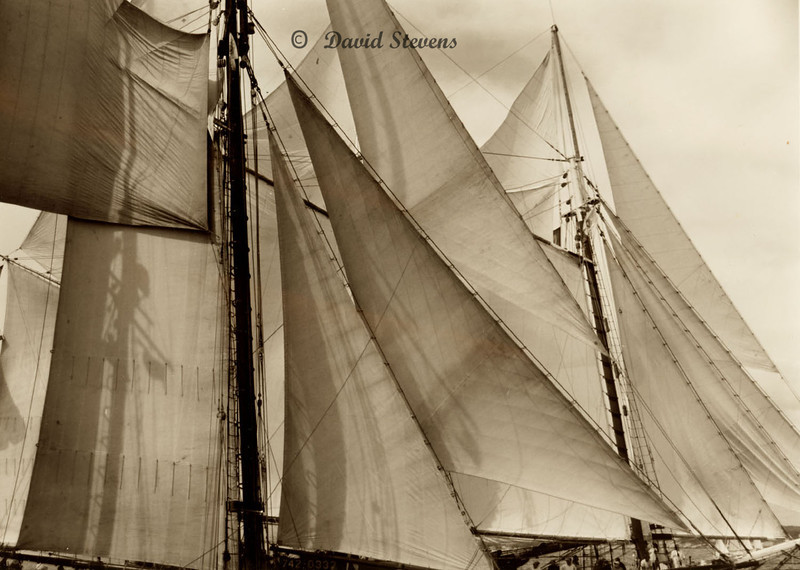 Sails at Starting Line