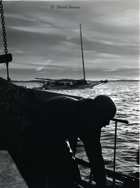 Oystering at Sunrise