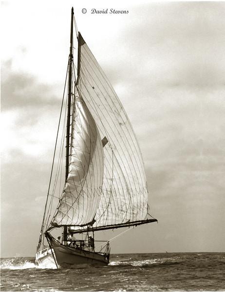 Skipjack Deale Island sepia