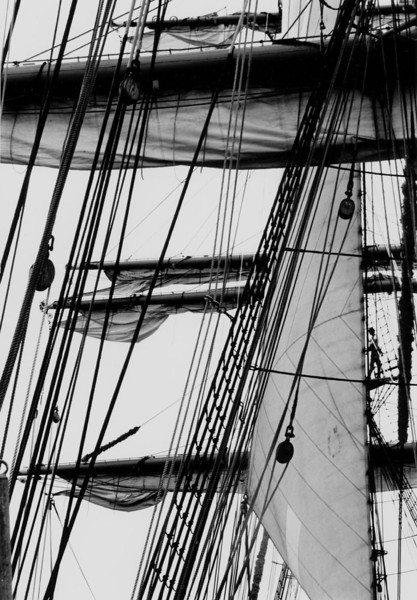 Man and Sails on Gorch Fock