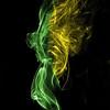 Sunflower Smoke , Cottage Grove fine art photographer and photography