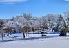Winter Wonderland on Lake Montesian_5286735696_o