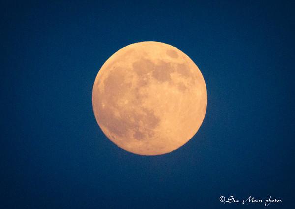 1 moonIMG_7491