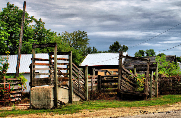 Part of the Stockyards in New Glarus, WI. The Stockyards closed this year after being in business for 100 years