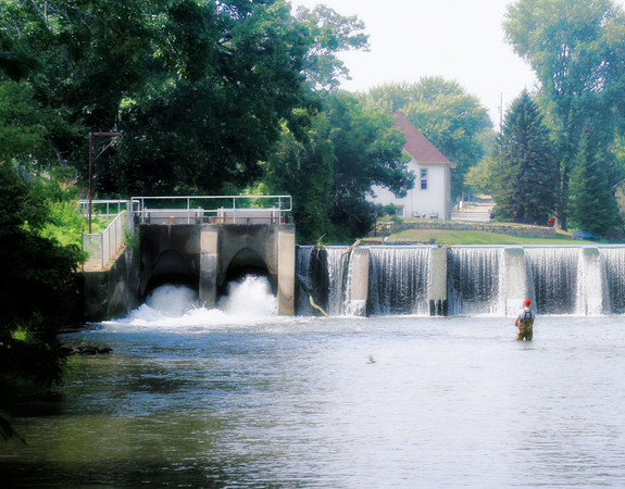 Fishing in Belleville on  a hot summer day