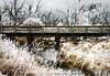 Bridge_2609