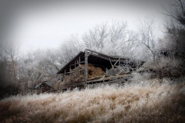 Frozen Barn_2596