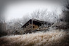 Frozen Barn_2596