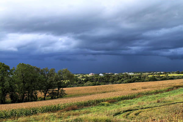 August Storm_5010410434_o