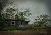 All that remained of the old homestead was the shell of the house and the ghosts of abandoned dreams.