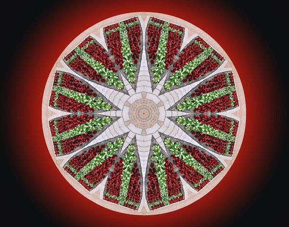 Just trying some  kaleidoscope type stuff. These are the flowers in front of the Swiss Church