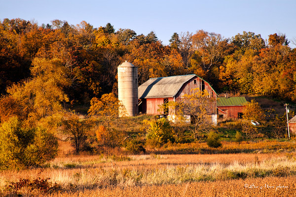 Autumn Barn_5990