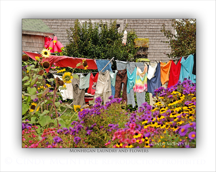 Monhegan Laundry and Flowers WC