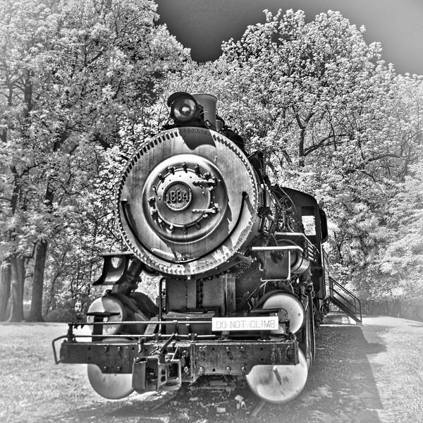Tanglwood Park Train