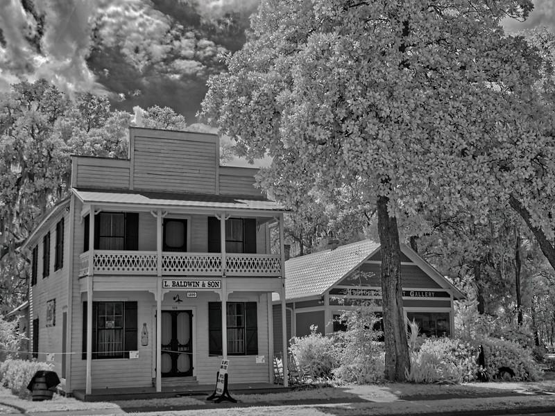L. Baldwin & Son Store, Melrose, Florida