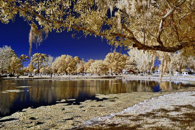 Cycadia Cemetery Lake
