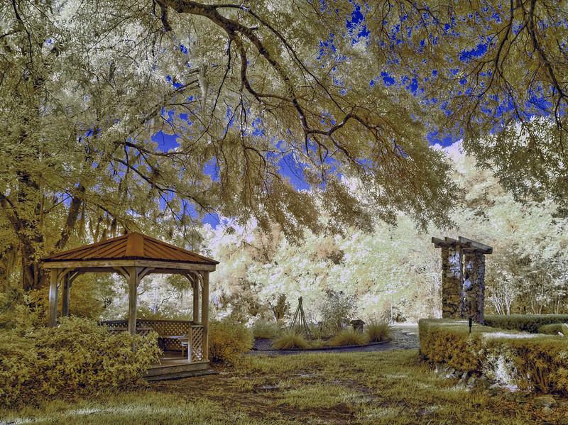 Ravine Gardens Formal Gardens in Infrared
