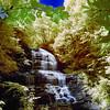 Stream below Pearson's Falls