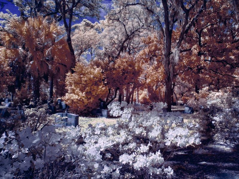 H. Warren Smith Memorial Cemetery (Infrared)