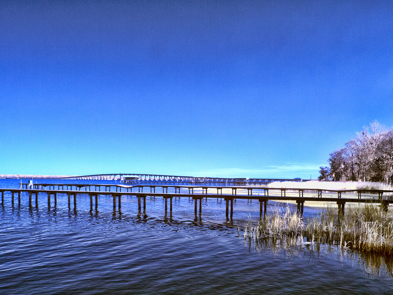 Shands Bridge