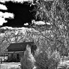Earleton Farmhouse in Infrared