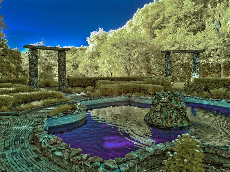 Ravine Gardens Reflection Pond in Infrared
