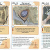 The Art of Game Design<br /> <br /> The five illustrations shown in the cards were commissioned for a game design company.<br /> The deck of cards were created to master the fundamentals of becoming a game designer. The Art of Game Design: A Book of Lenses illustrates that the same principles of psychology that are used for board games, athletic games and card games are also the keys to making excellent video games.<br /> <br /> Pencil sketches were emailed as the first proofs, changes done and the final color images also sent via email for print production.<br /> <br /> Medium: Watercolor on Hot Press Paper