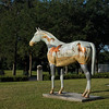 """Horseplay"" by Sally Ann Lyle"