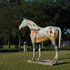 """Horseplay"" by Sally Ann Lyle"