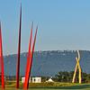 Sculputure Fields at Montague Park