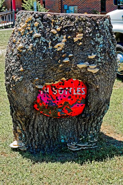 Coke Sign Eaten by a Tree