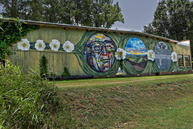Interesting Summerville Georgia Mural