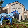 College of Central Florida's Horse Fever Statue