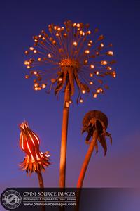 140605_8558_Oakland_Public_Art_Sculpture