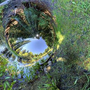 Bullfrog Pond Tube