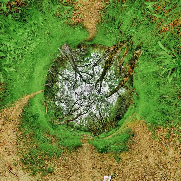 Tree Tube