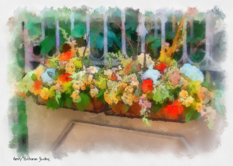 Flower Baskets-  Studio Art